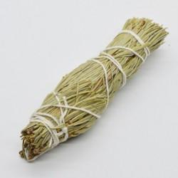 Buchet Pin (Pine) 14cm